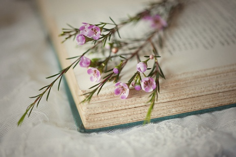 beautiful-book-cute-flower-Favim.com-489337